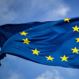 Data Subject Rights in the GDPR: Who Has Visibility and Control Over Personal Data?