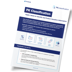 PK Classification: Apply Labels to Identify and Protect Sensitive Information