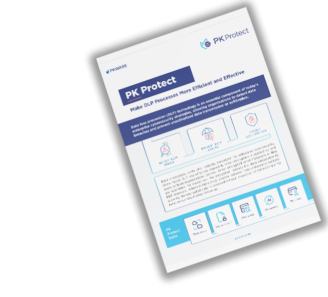 PK Protect: Make DLP Processes More Efficient and Effective